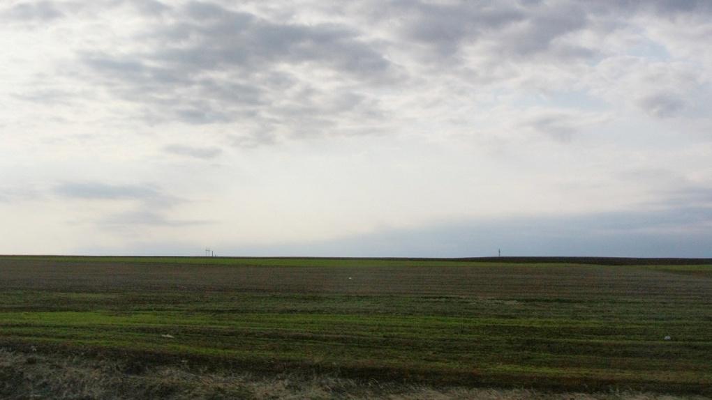 В Свердловской области определили первую площадку под реновацию. Это чистое поле под Сысертью