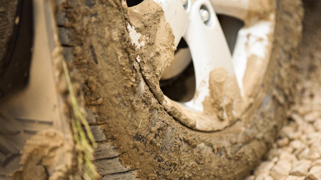 В Екатеринбурге придумали новый план борьбы с гряземесами. Три причины, почему у них ничего не выйдет