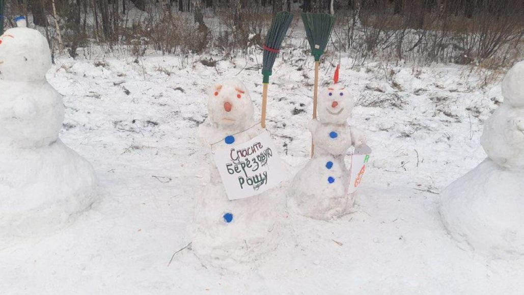 Защитники березовой рощи в Академическом организовали протестный пикет снеговиков