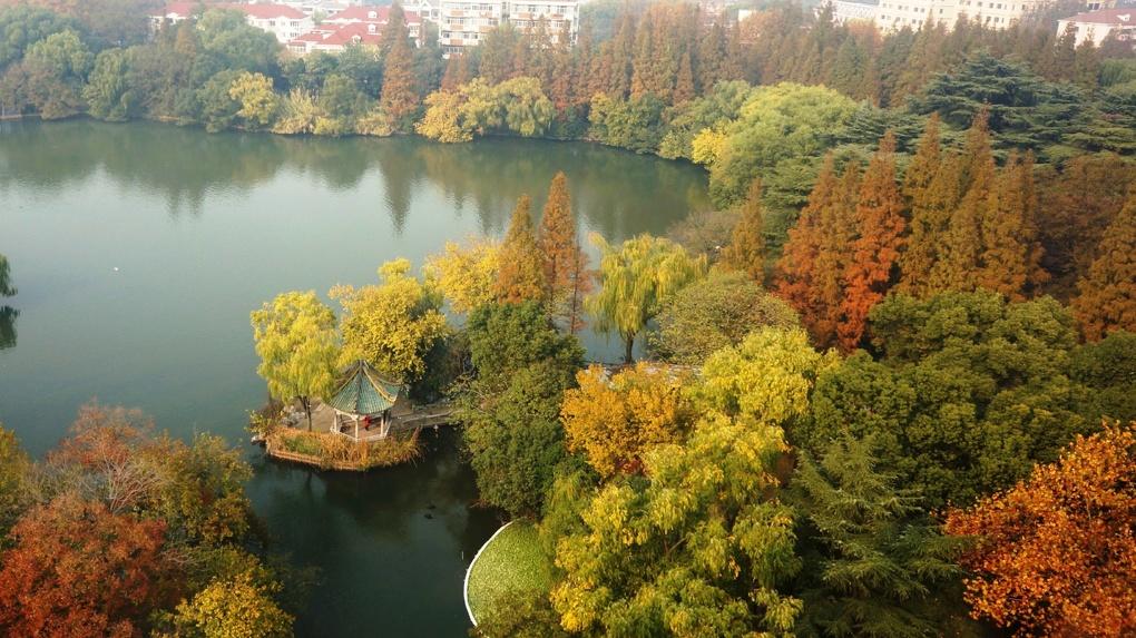 Погода на выходные: Екатеринбург ждут два последних теплых дня
