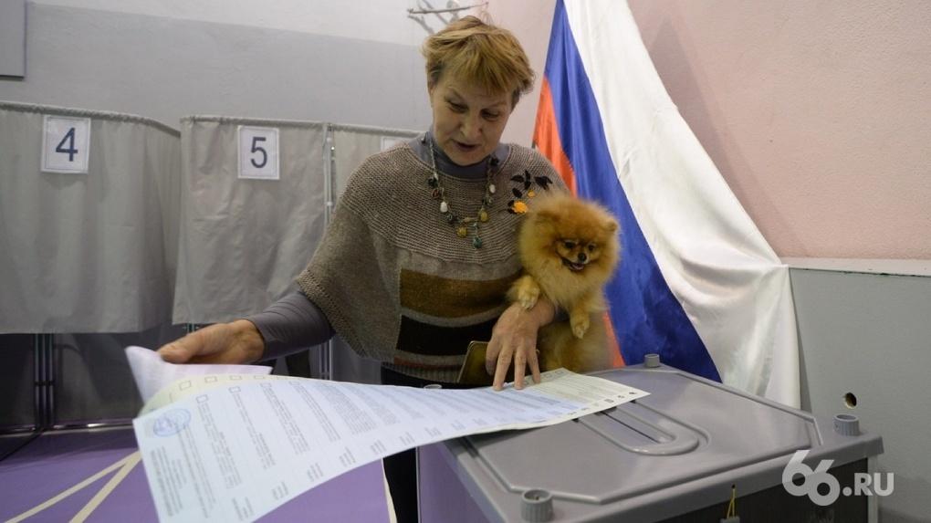 Фотограф нашел в агитматериалах «Единой России» свой снимок. Теперь партию ждет суд