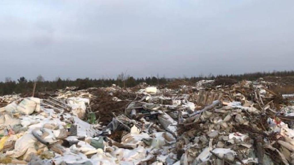 У аэропорта Кольцово ликвидировали опасные для самолетов свалки