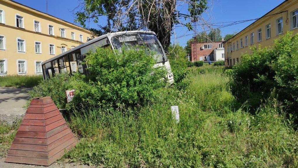 Число погибших в ДТП с автобусом, который сбил толпу пешеходов, выросло до семи