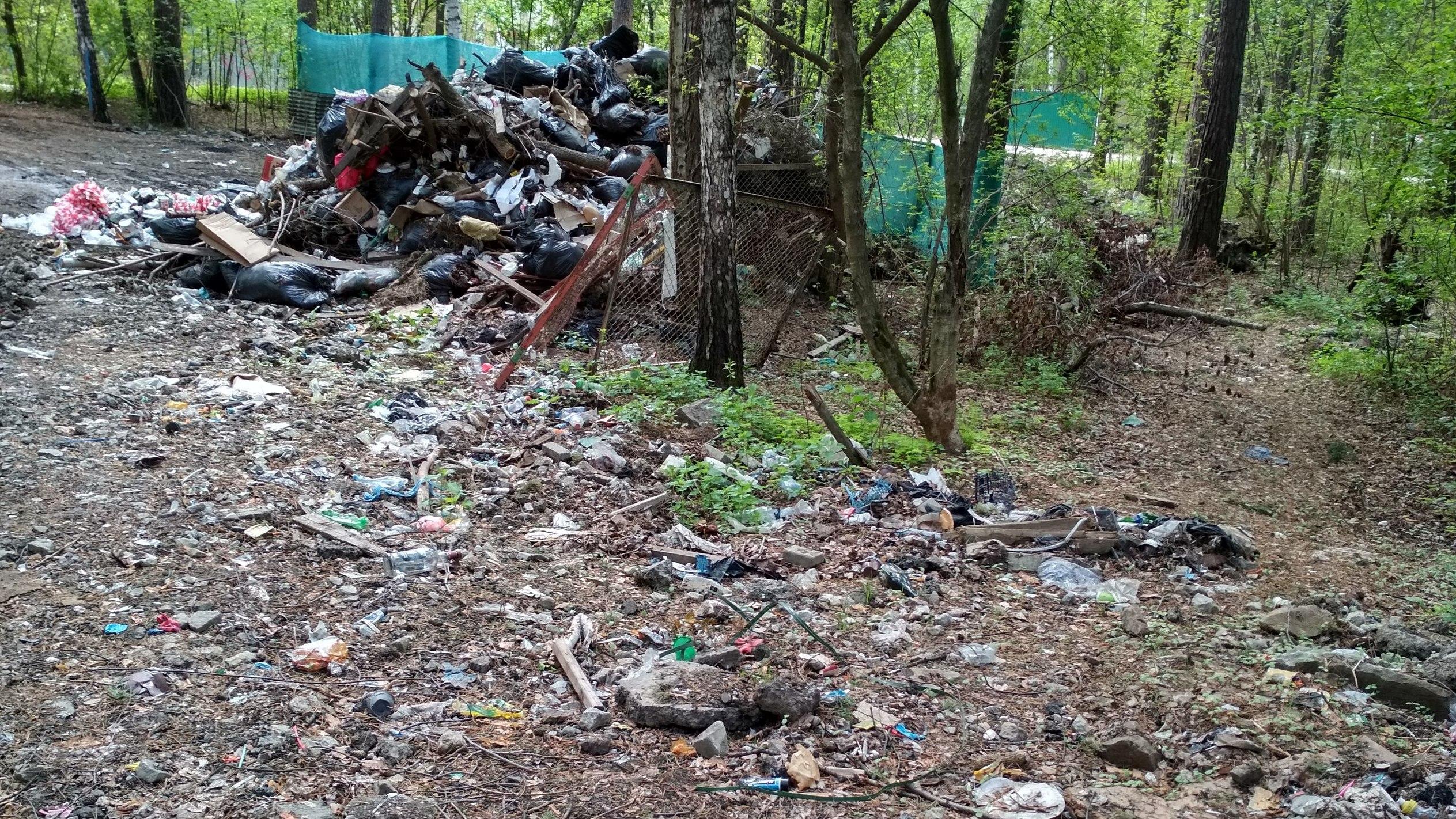 Генерал Шадрин обвинил лидера движения «Удобный город» в том, что тот раскидал мусор по ЦПКиО