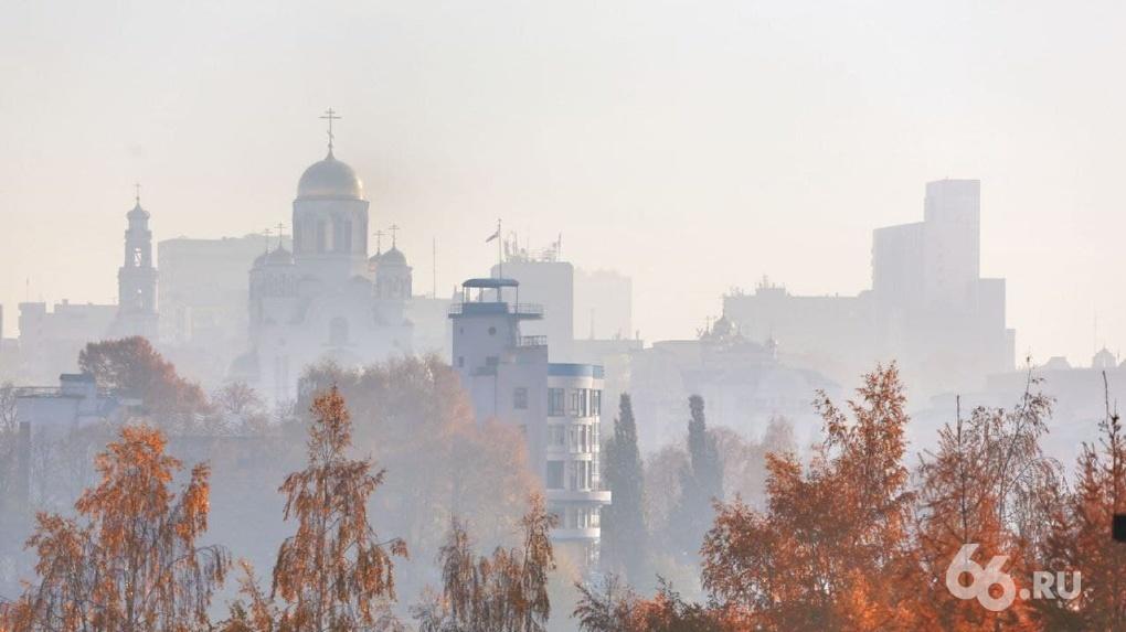 На тушение тлеющих торфяников в Екатеринбурге бросят десантников и тяжелую технику