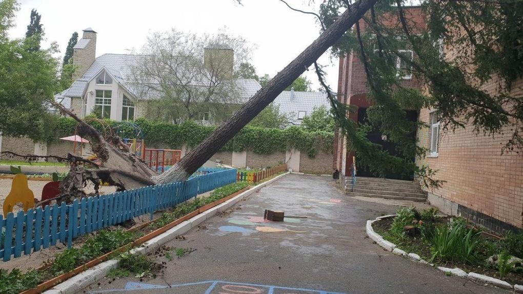 Шторм сдул фасады с домов и вырвал деревья с корнем. Фото, видео