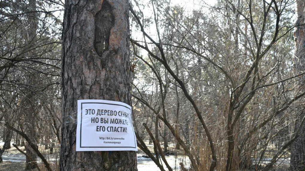 Благоустройством Зеленой Рощи займутся строители дорог, подконтрольные УГМК