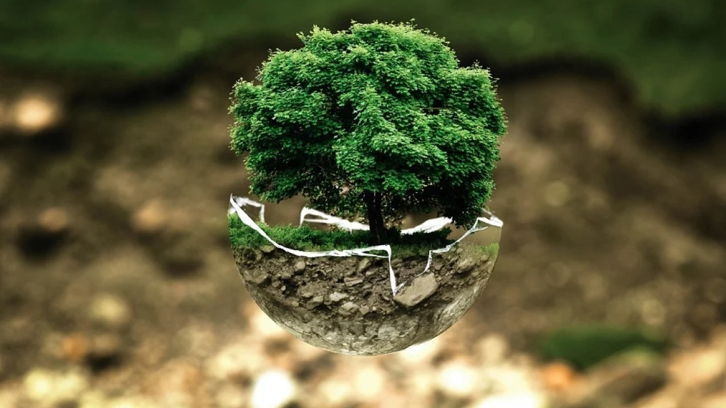 Для малого бизнеса разработали программу страхования экологических рисков. Где приобрести полис