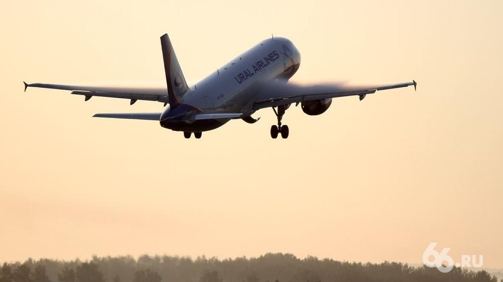 Самолет, три часа круживший возле Екатеринбурга из-за неисправности, сел в Кольцово
