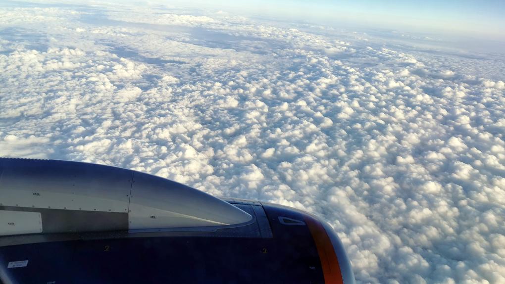 Нас пугали жесткими ограничениями в полетах во время пандемии. А на деле?