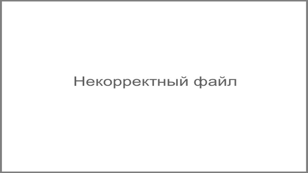 Дмитрий Ревякин: «Катастрофа рядом, ее пасть открыта, мы чувствуем это зловоние»
