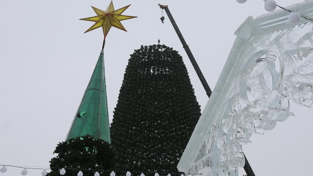 Мэрия купит елку-конус для украшения Екатеринбурга