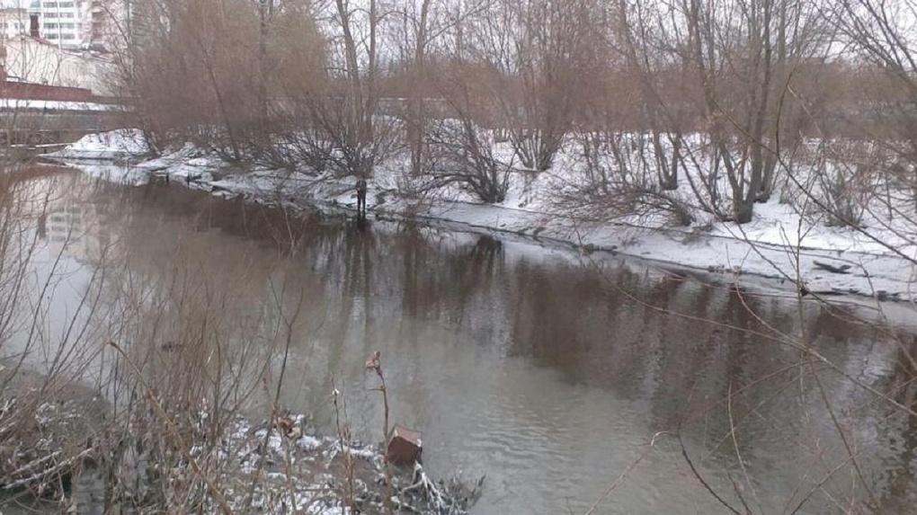 Министр природных ресурсов назвал нецелесообразной очистку экстремально загрязненных рек Урала