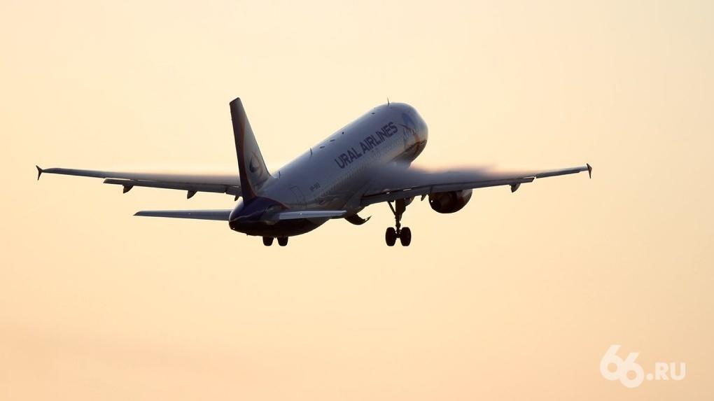 Губернатор отказался прекращать авиасообщение с Москвой, где коронавирусом заражены 4,4 тыс. человек