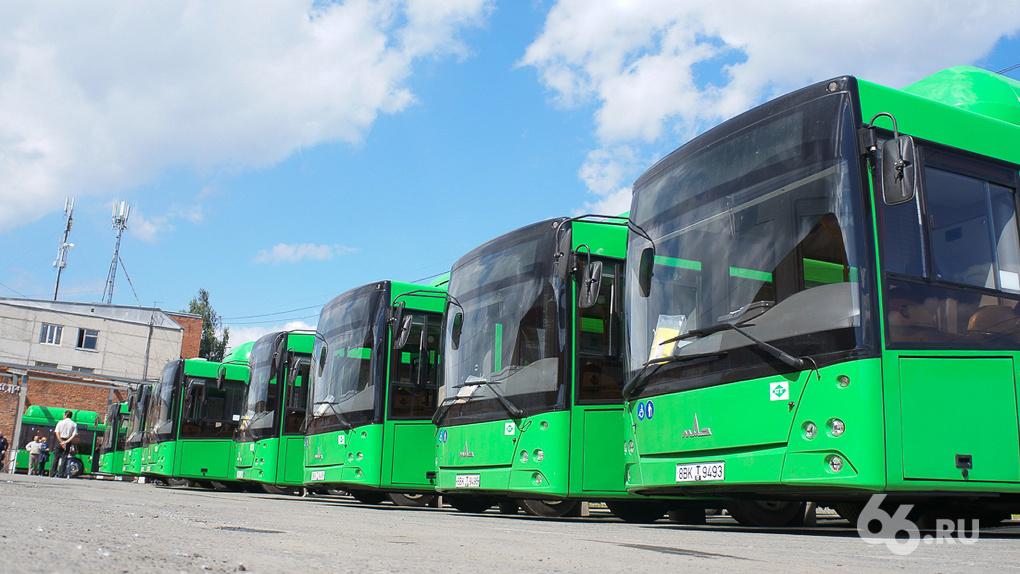«Постепенно мы придем к одному цвету»: к ЧМ-2018 в Екатеринбурге позеленеют все муниципальные автобусы