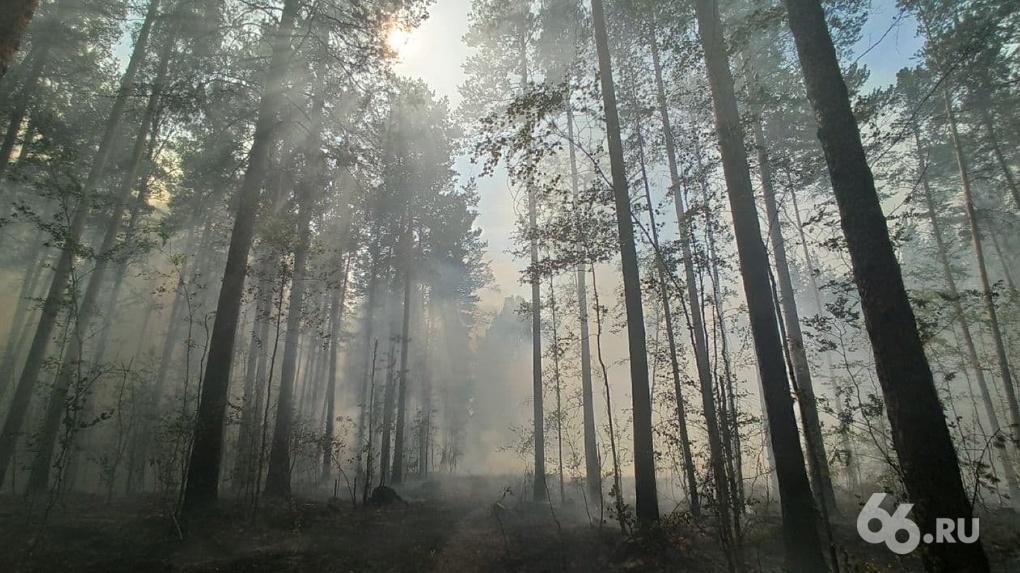 К Екатеринбургу подступает огонь. Карта лесных пожаров