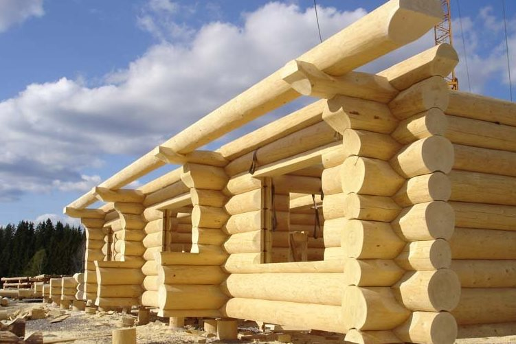 Многодетным семьям дали 20 участков земли в «Палниксе»