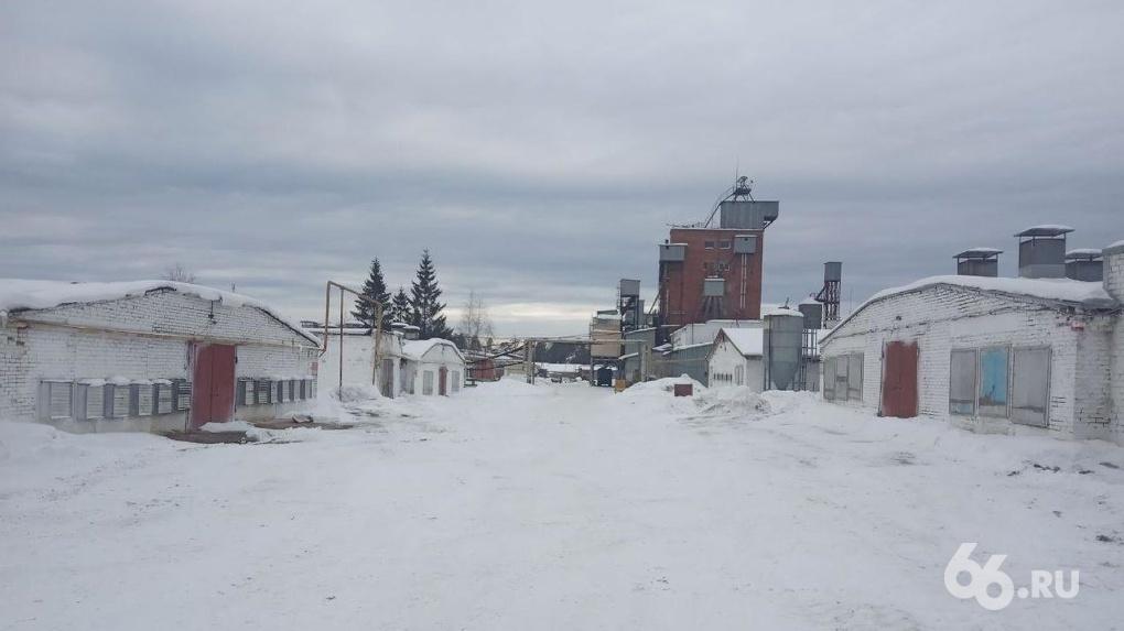 Остановка Среднеуральской птицефабрики уничтожит ее. Рабочим объявили о сокращении