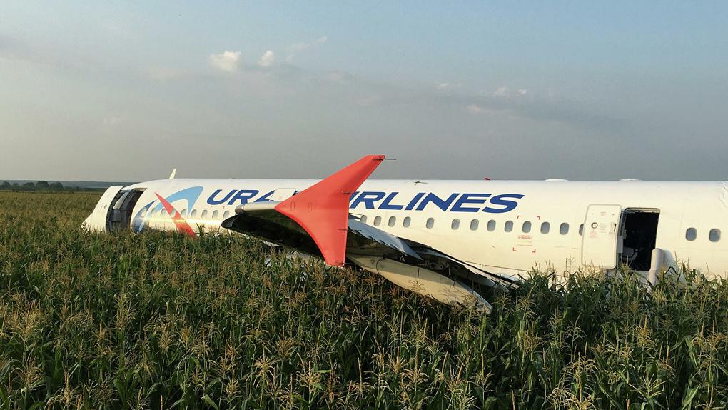 Про аварийную посадку самолета «Уральских авиалиний» в кукурузном поле снимут фильм