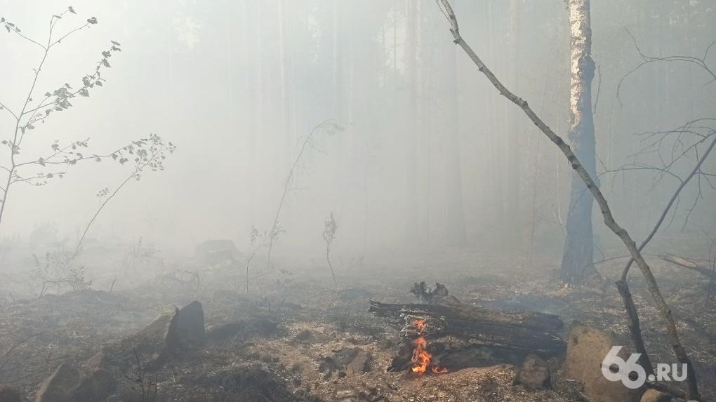 Когда в Свердловской области перестанут возникать лесные пожары? Прогноз