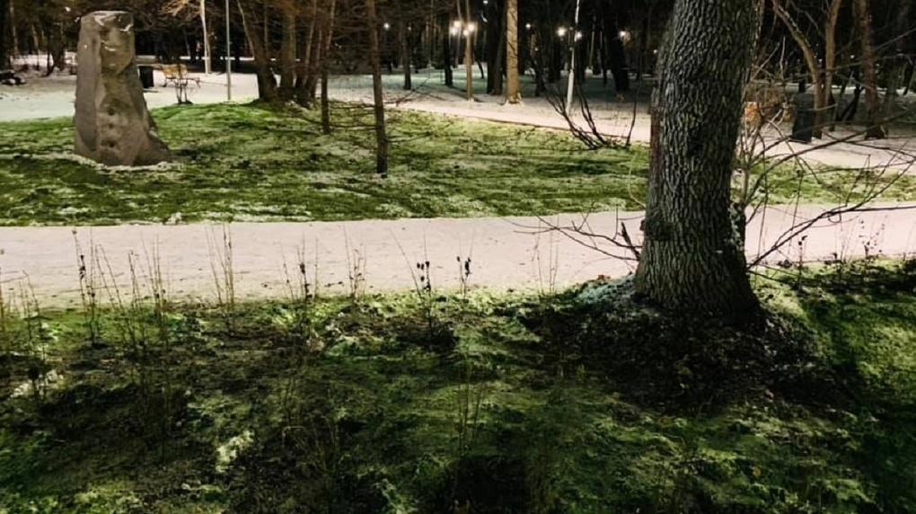 В Зеленой роще снег стал ядовито-зеленым. Что это такое?