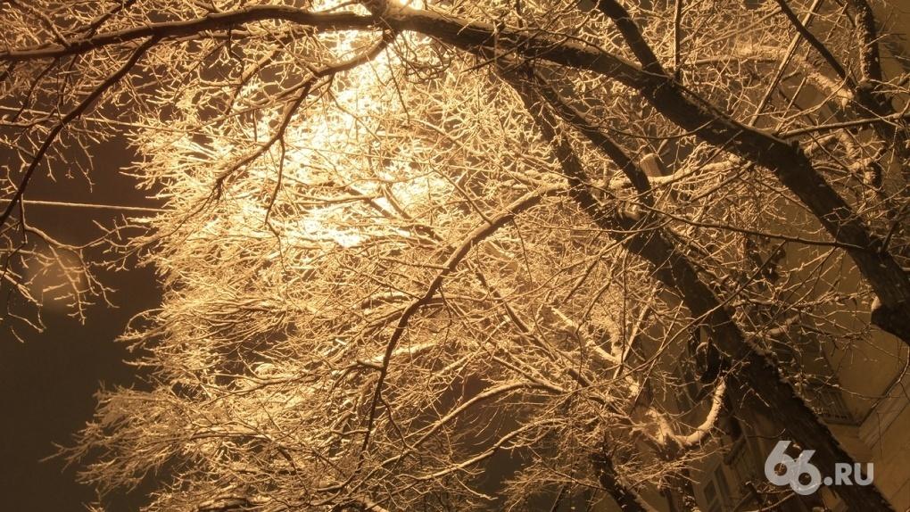 «Прошлая зима стала рекордно теплой». Синоптики рассказали, как на Урале меняется климат