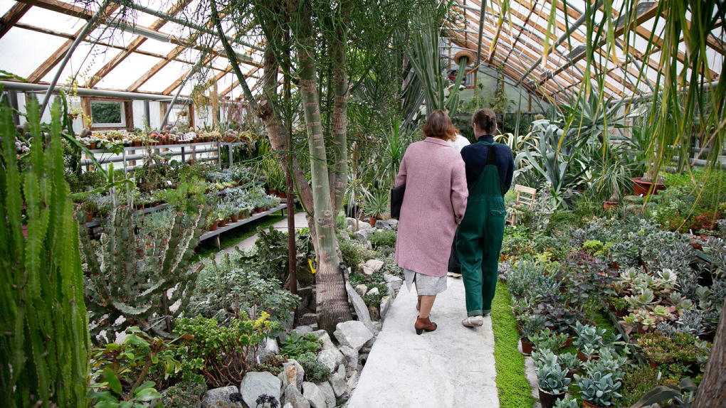 Вход в Ботанический сад УрО РАН снова сделают бесплатным. Но ненадолго