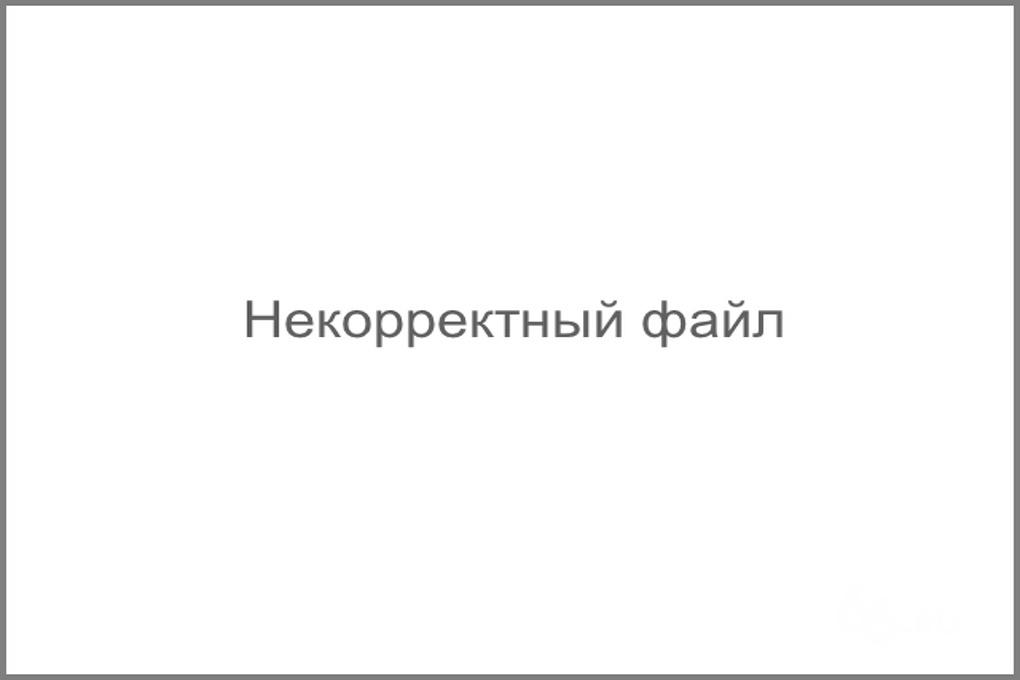 Ольга Котлярова: «У нас «чиновник» — ругательное слово. Почему?»