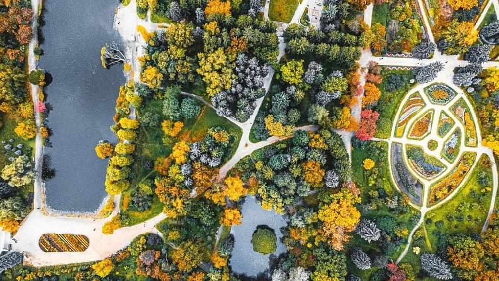 «Этот парк особенный — он для деревьев». Альтернативный план реконструкции Дендрария на Первомайской
