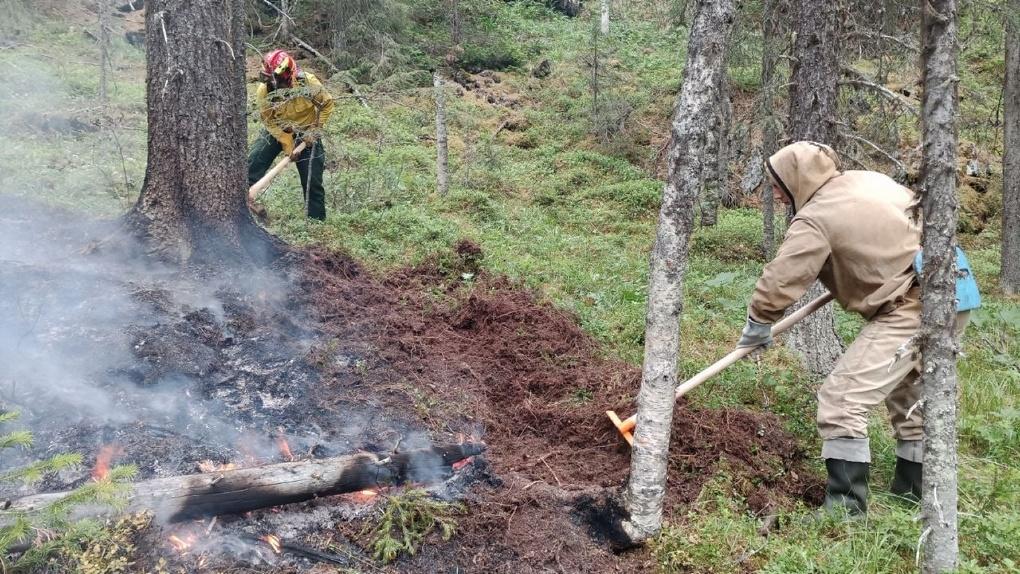 В заповеднике «Денежкин камень» тушат два пожара. Общая площадь превысила 100 га