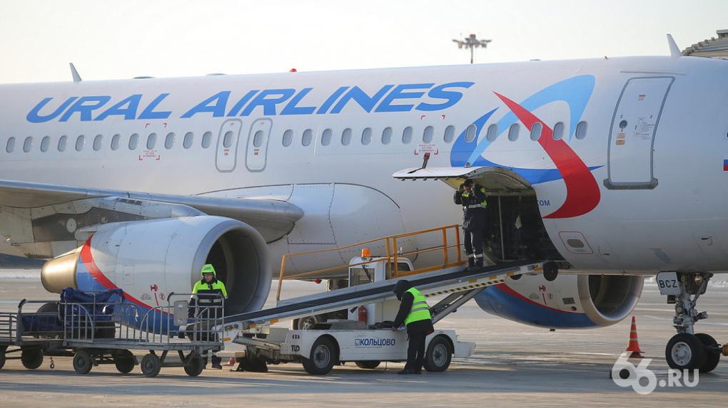 «Уральские авиалинии» перепрофилировались и обеспечили себя заказами на полтора месяца вперед