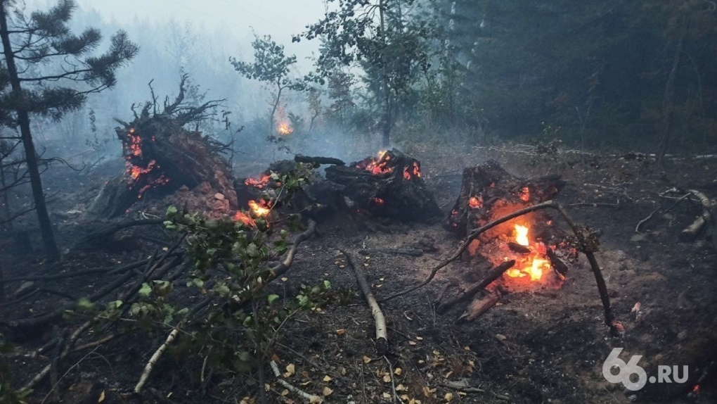 В Свердловской области потушили крупный лесной пожар, но новые очаги продолжают возникать. Причина