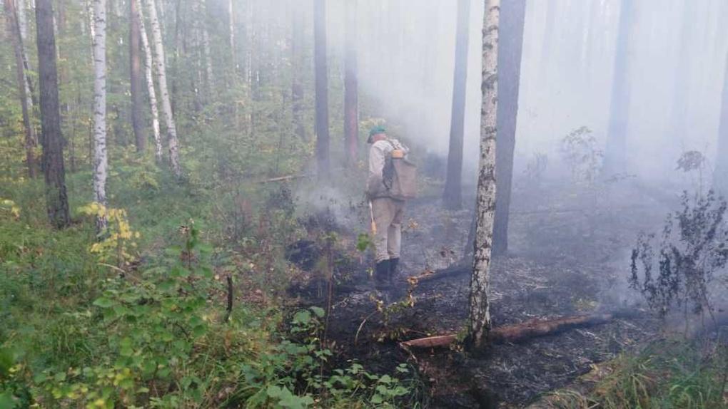 Под Первоуральском горит лес, людей эвакуируют из санатория. Фото