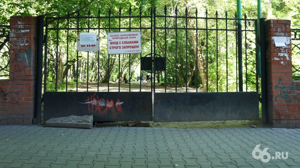 В Екатеринбурге из-за коронавируса закрыли два парка. Но гуляющих не останавливают даже заборы