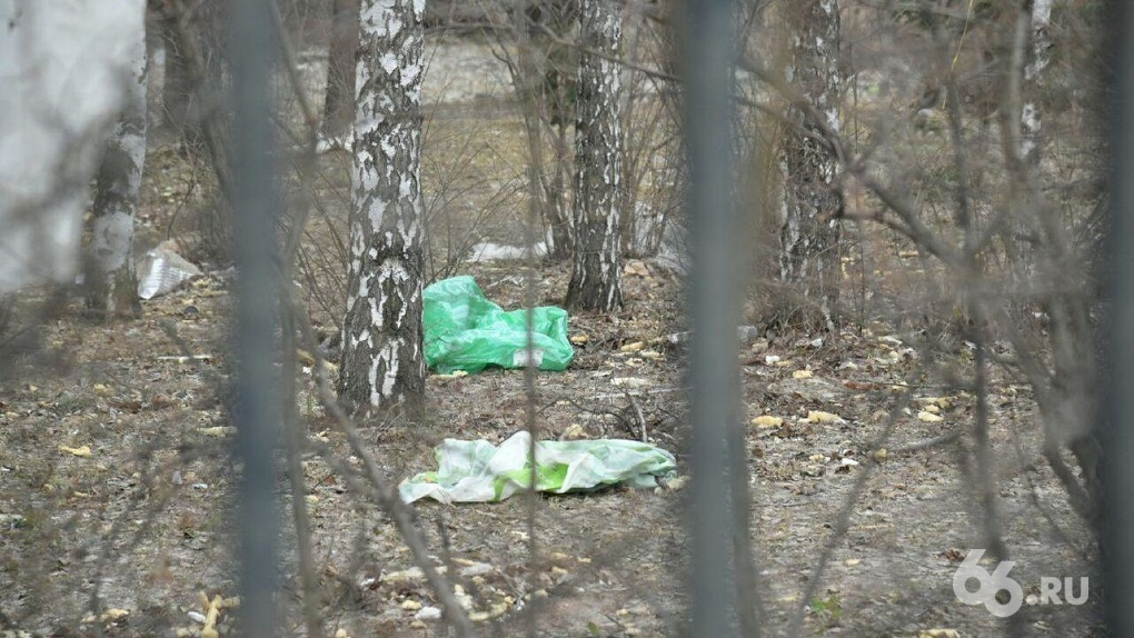 Ботанический сад УрО РАН завалило мусором. Пакеты и куски монтажной пены летят с соседней стройки