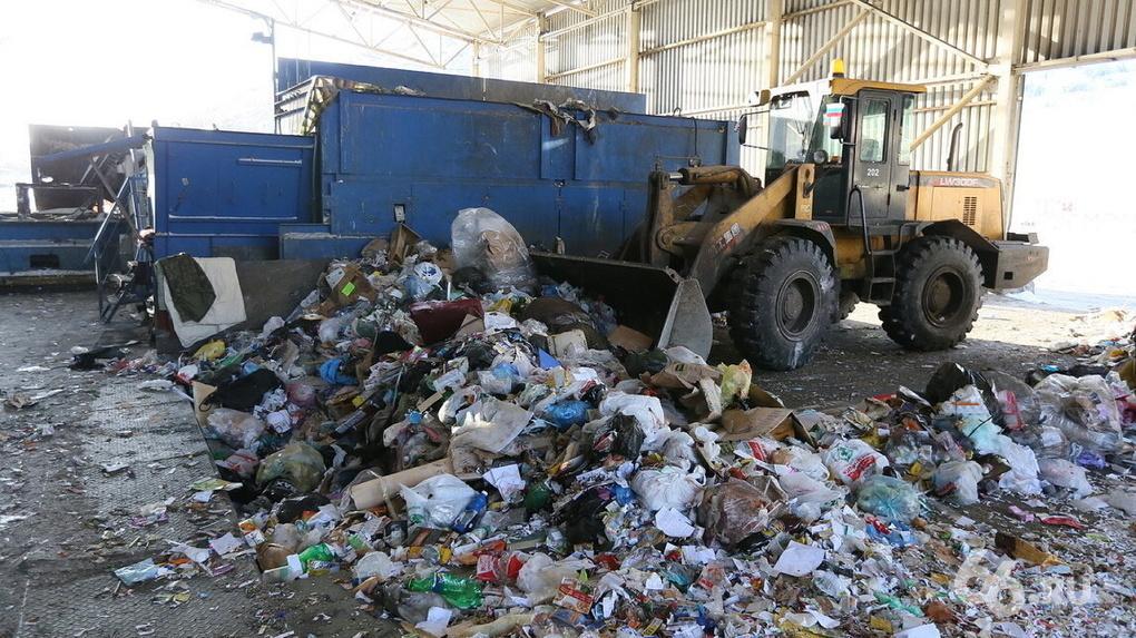 Гора отходов выше пирамиды Хеопса. Экологи посчитали, сколько бытового мусора создает Екатеринбург