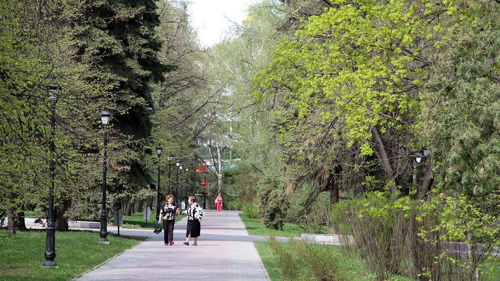В Екатеринбурге начали обрабатывать парки от клещей. Список зеленых зон, где можно безопасно гулять