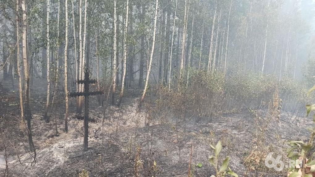 В Свердловской области выгорело больше 5 тысяч гектаров леса