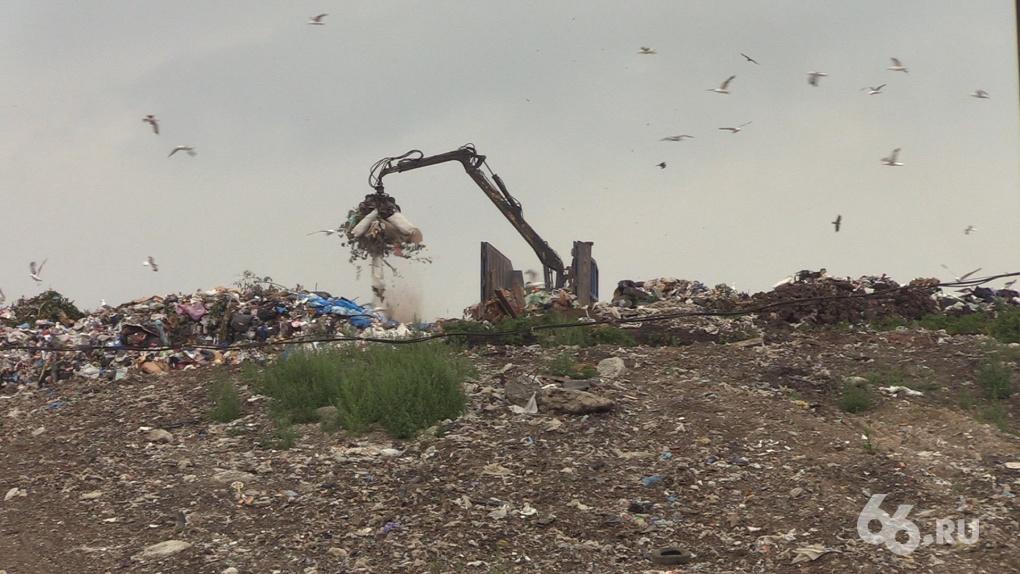 На Среднем Урале растет мусорная напряженность. Шесть историй, которые подтверждают это