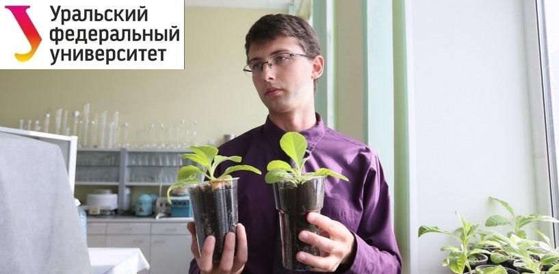 Человек Наук. Биотехнолог — о трансгенной картошке, ёлках в пробирках и борьбе растений с тяжелыми металлами