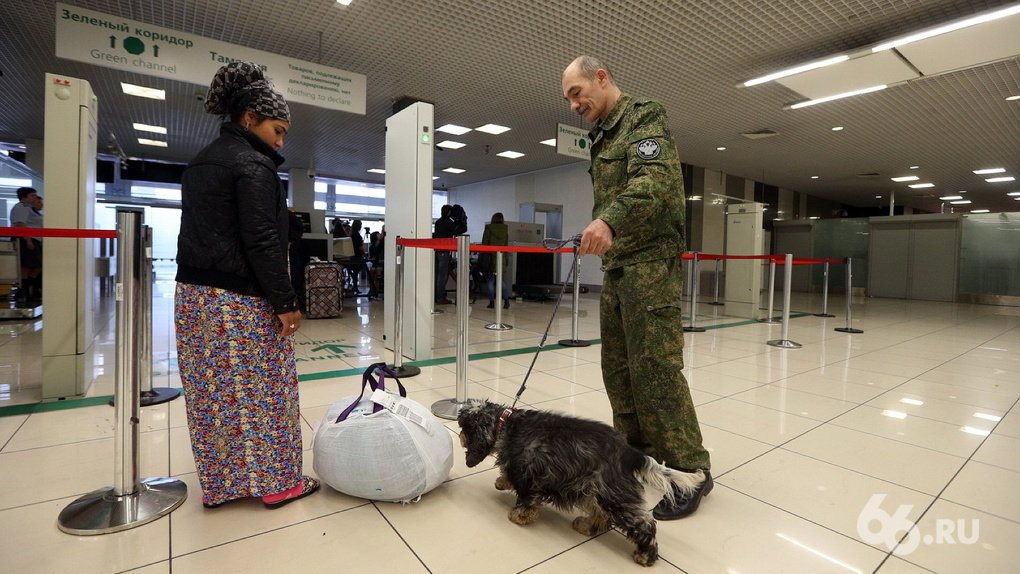 Пропавший интернет сломал Кольцово: из строя вышли паркоматы и стойки регистрации аэропорта