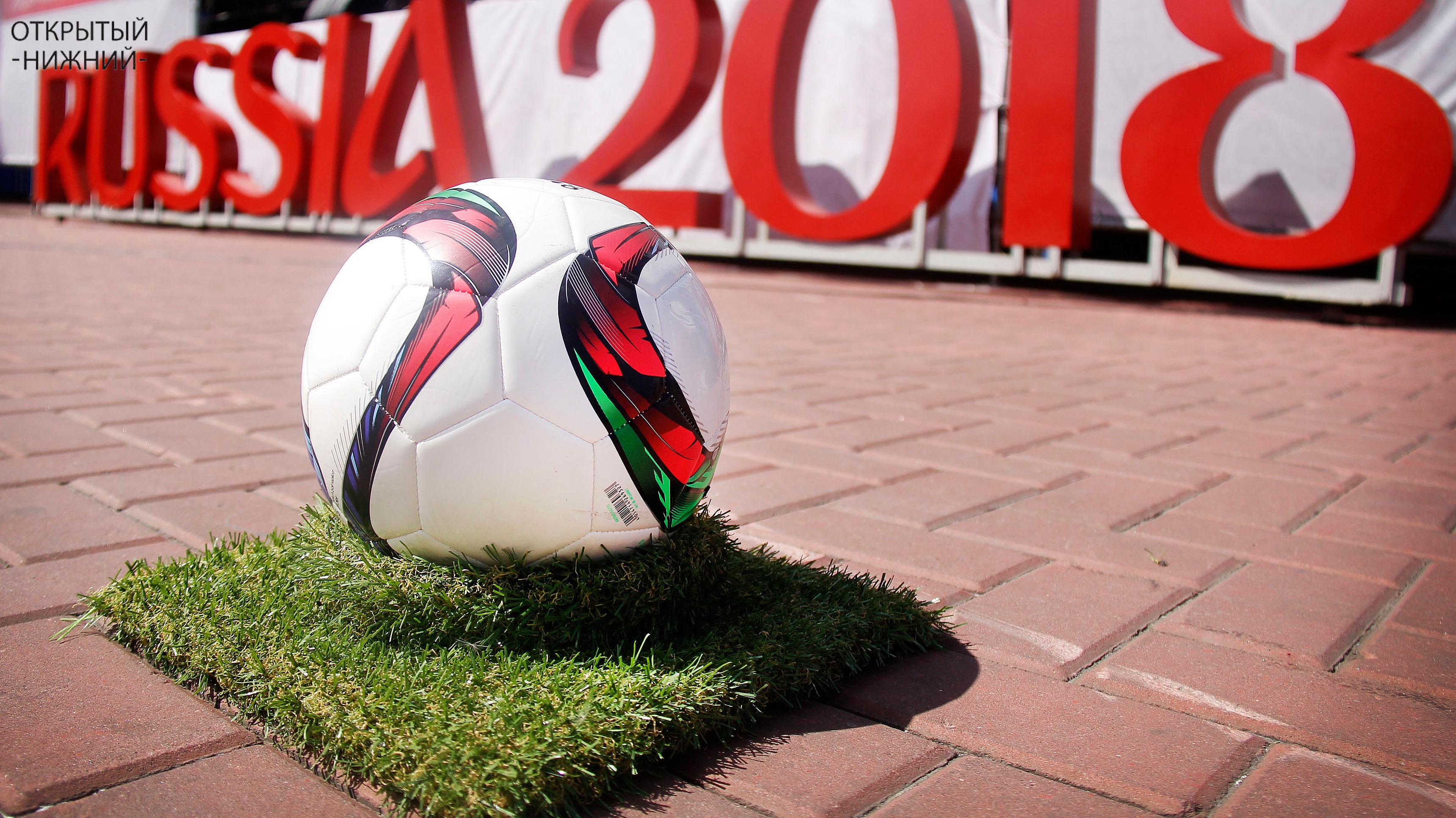 Госкомпании накупили VIP-билетов на чемпионат по футболу на 204 млн рублей