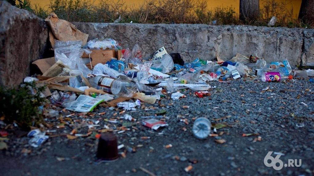 Чтобы спасти планету, все переходят с пластиковой упаковки на бумажную. От этого Земле только хуже