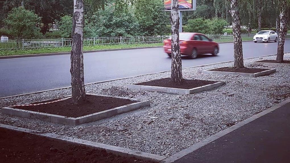 В Екатеринбурге стали строить газоны с деревьями по-новому. Теперь на этих участках нельзя припарковаться