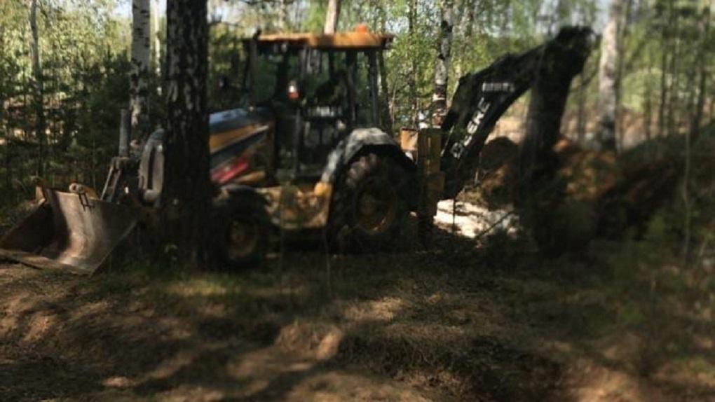 Природоохранная прокуратура начала проверку строительства глэмпинг-парка в «Мичуринском»
