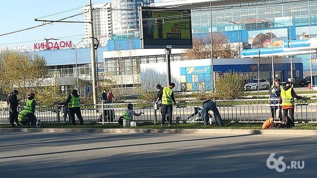 Фото дня: десять рабочих вплотную друг к другу красят забор, забыв про социальную дистанцию