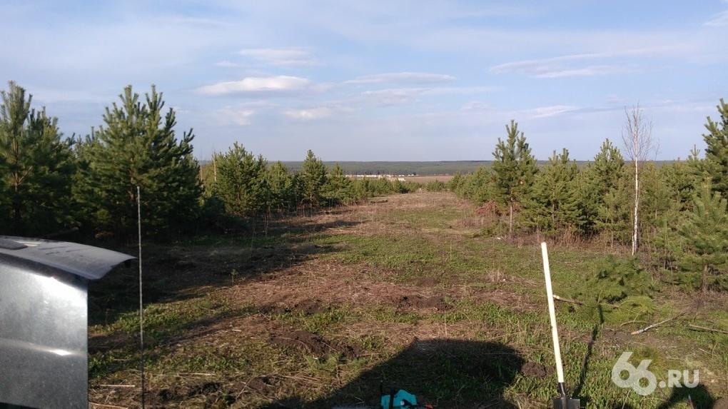 Круговорот отписок: 500 семей три года ждут исполнения указов Путина в чистом поле под Екатеринбургом