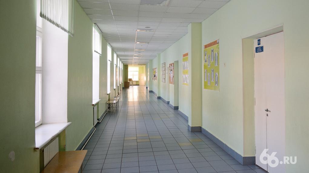 Школы Екатеринбурга закроют на карантин из-за эпидемии ОРВИ и гриппа