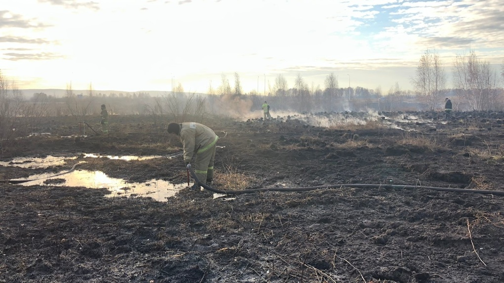 На юге Екатеринбурга тлеют гектары торфяников. До конца недели в городе будет нечем дышать