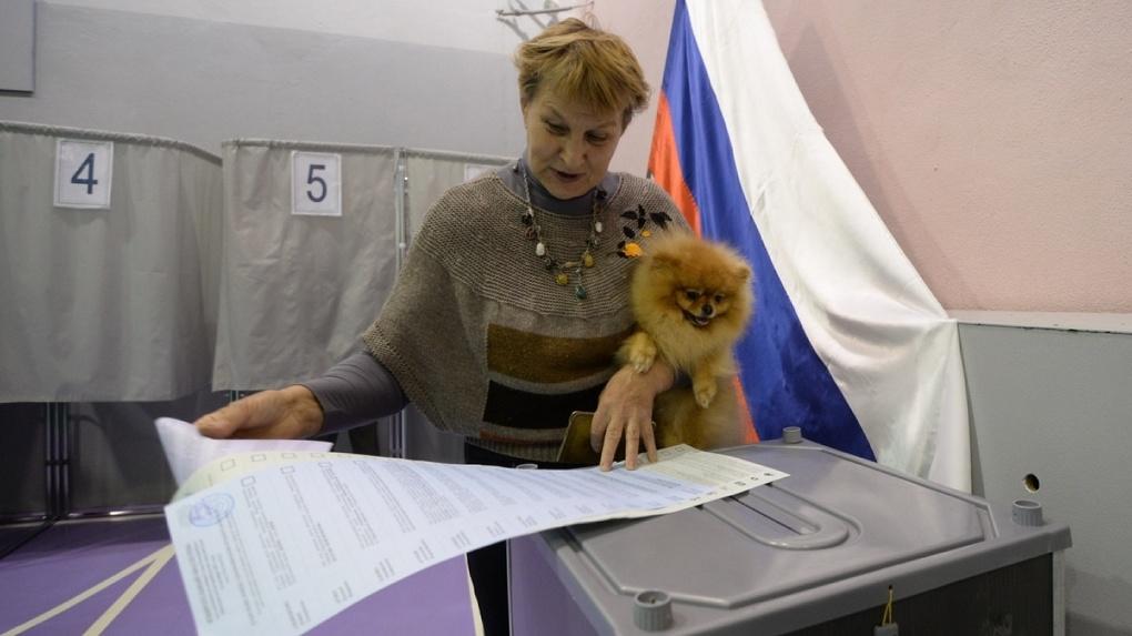 Кто победил на праймериз «Единой России»: результаты первых экзитполов